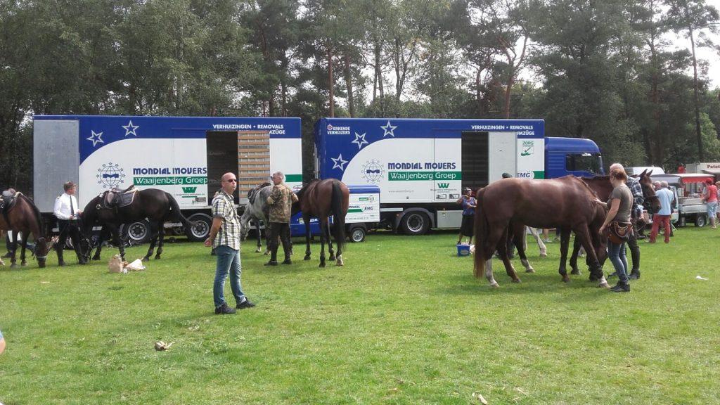 Mondial Waaijenberg Verhuizers Tocht te Paard paarden