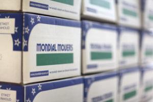 Mondial Movers Verhuisdoos, Verhuizen